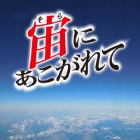 東日本大震災における航空宇宙関係の被害
