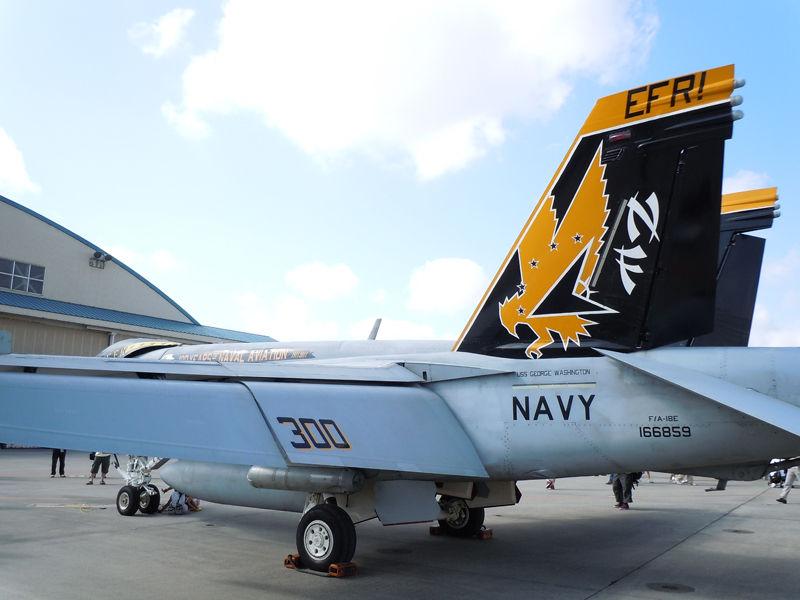 VFA-115「Eagles」のCAG機であるF/A-18E