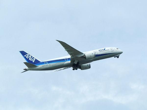 ローンチカスタマーに敬意を表して、全日空カラーで完成した機体