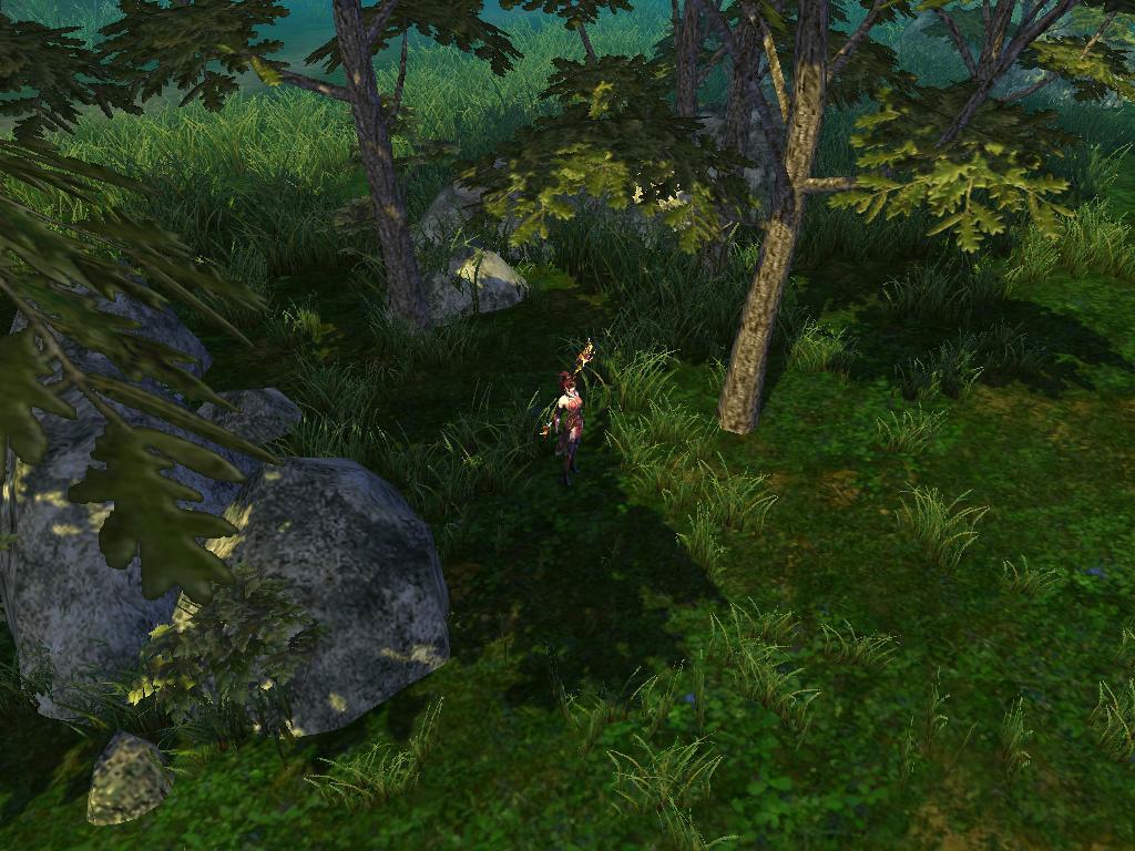 マップ「深淵の大森林」