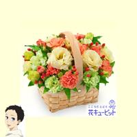 アニメ「夏雪ランデブー」劇中登場の花屋が花キューピットで期間限定オープン