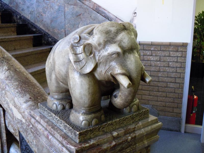 笑っているように見える階段室の象