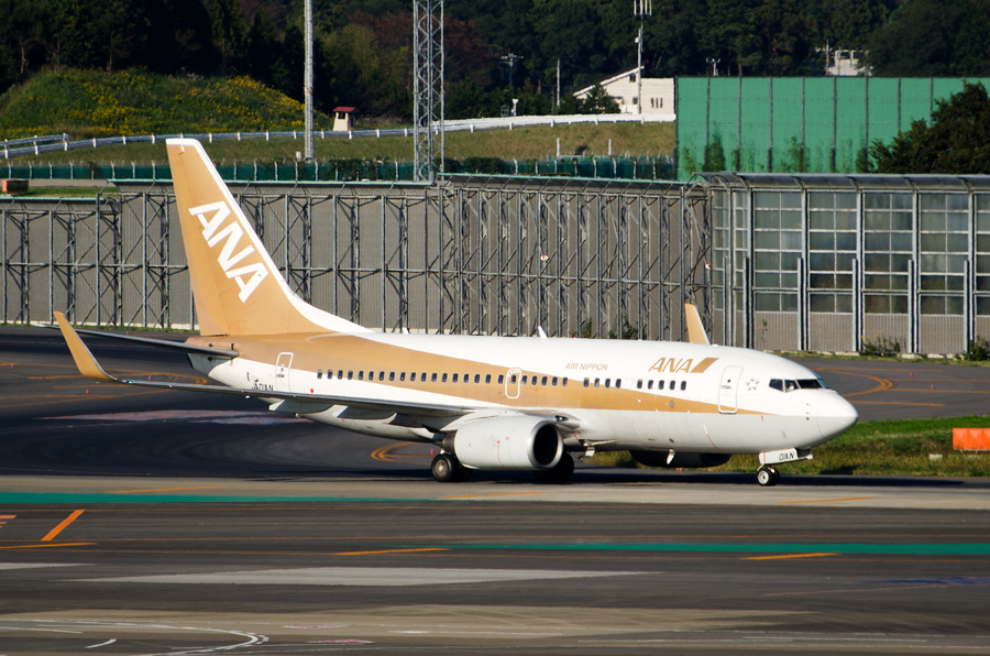 ANAのB737-700ゴールドジェット(JA01AN)