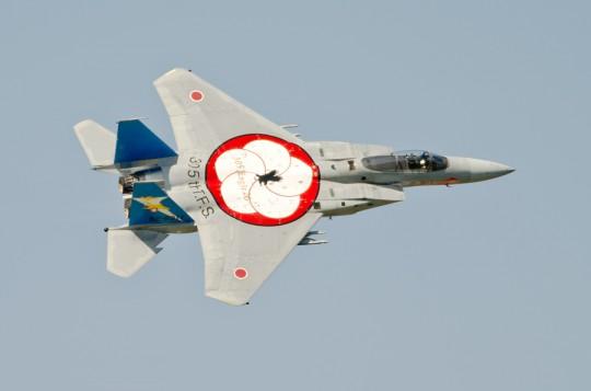 305飛行隊特別塗装は背中にもデザインが