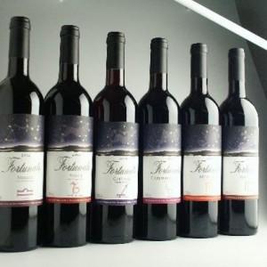 『星座ワイン』