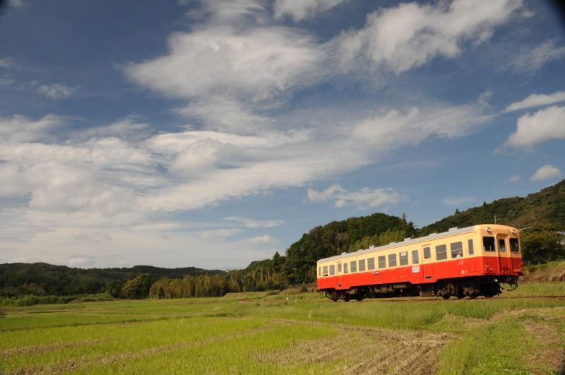 里山を行く列車