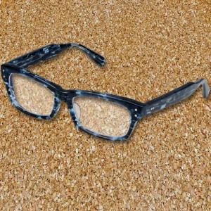 トッキュウ2号 トカッチ 眼鏡