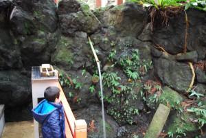 川上神社右手にある水飲み場