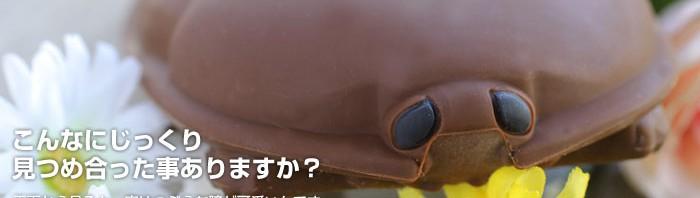 いやぁぁぁぁぁぁ!「ゴキブリ」をモチーフにしたiPhoneケース登場