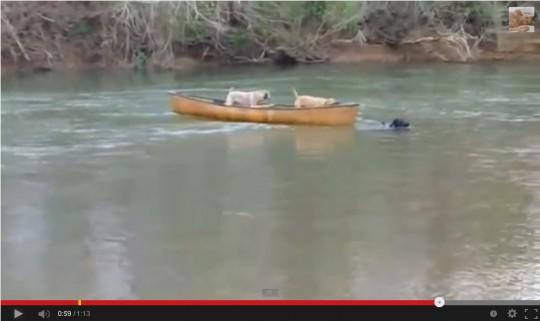 なんとかロープをキャッチ!ゆっくりゆっくり慎重にカヌーを岸まで運びます