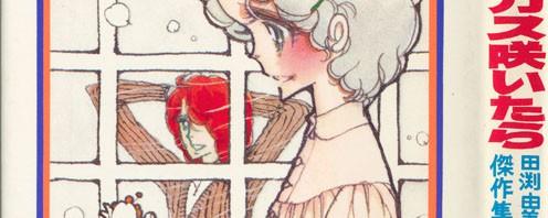 【うちの本棚】222回 クロッカス咲いたら/田渕由美子
