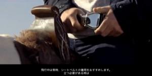 え?馬に飛行機のシートベルト?