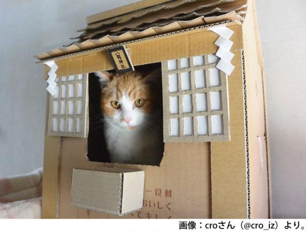 croさん(@cro_iz)さんより