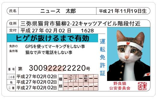 なめんなよ!の『なめ猫免許証』がジェネレーターで復活!