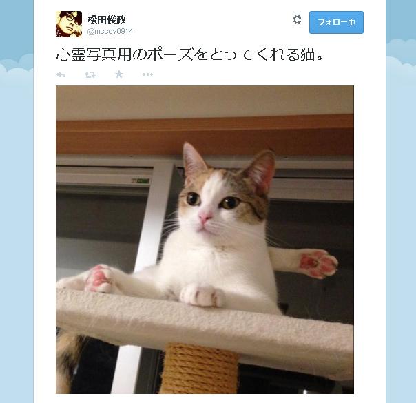 マジで心霊写真!?愛猫の背後に謎の手が出現……