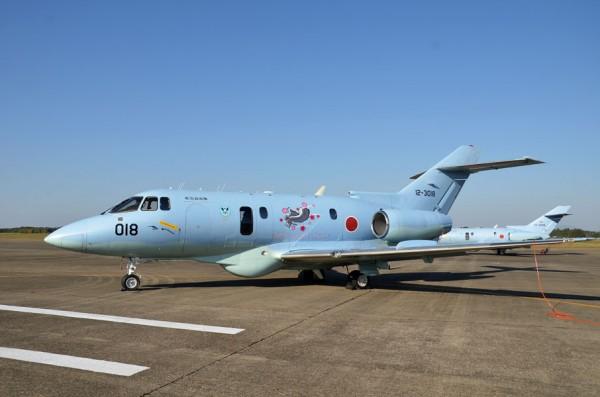 救難隊50周年記念のU-125A