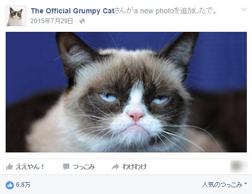 我が家の猫が仏頂面だからネットに投稿してみた→100億稼ぐ猫に アメリカンドリームってすげぇぇ