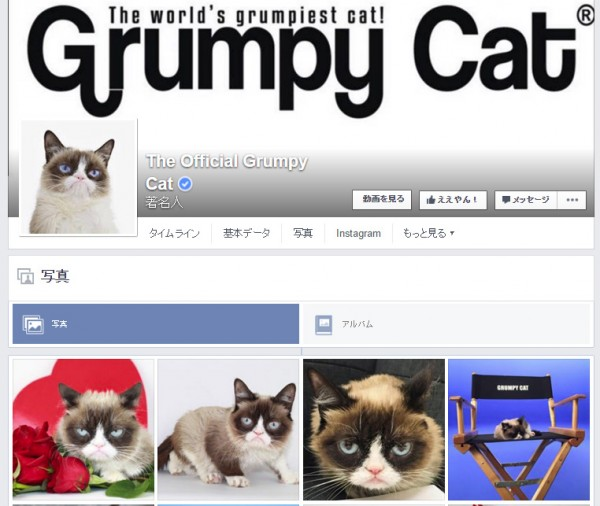 The Official Grumpy Cat Facebookページより。