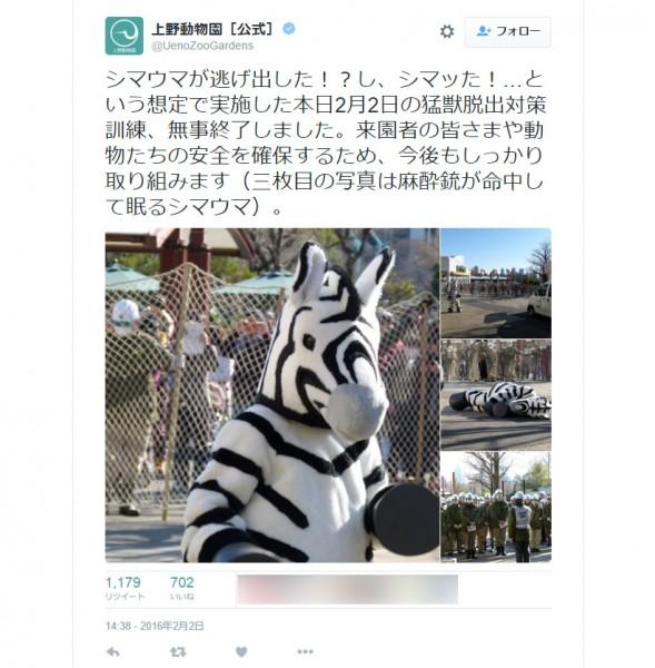 (上野動物園公式Twitterより。)