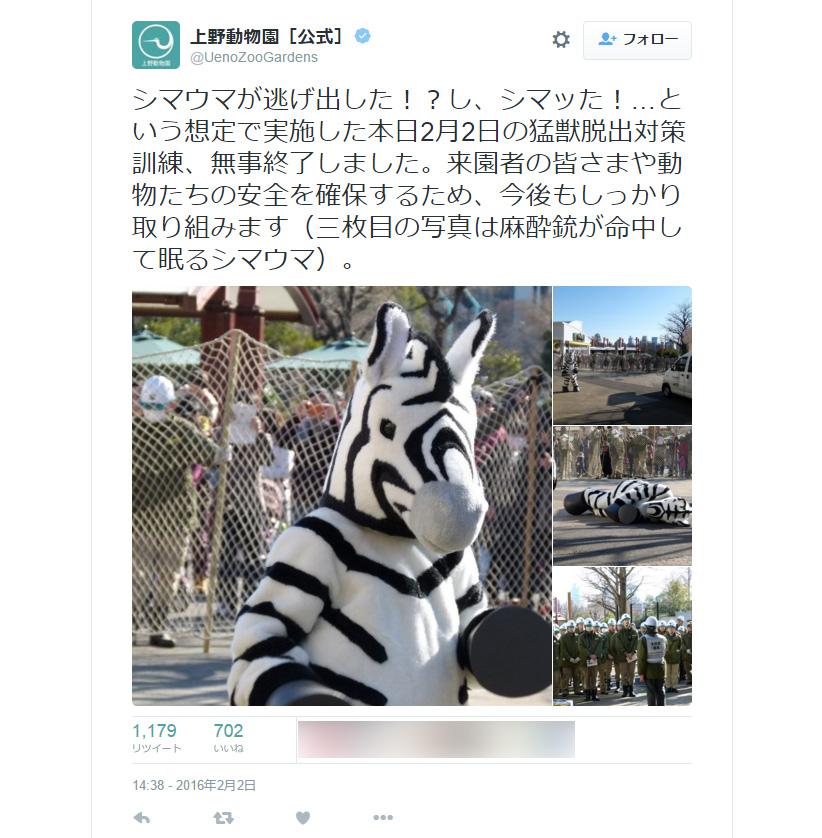 シマウマが逃げてシマッた!上野動物園の猛獣脱出対策訓練が話題