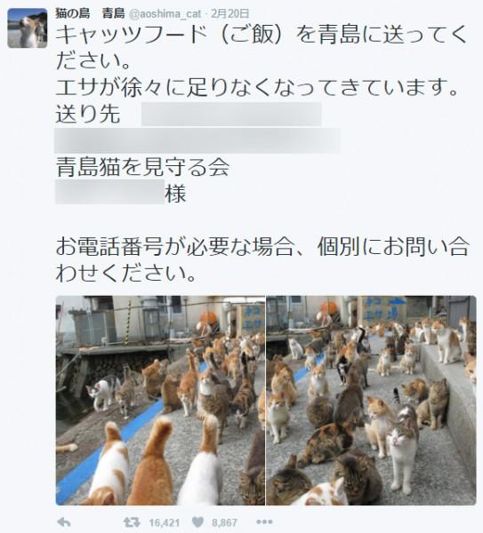 猫の島 青島(@aoshima_cat)より。