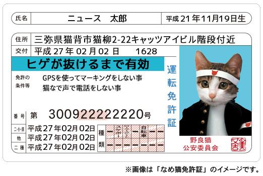 なめ猫免許証イメージ