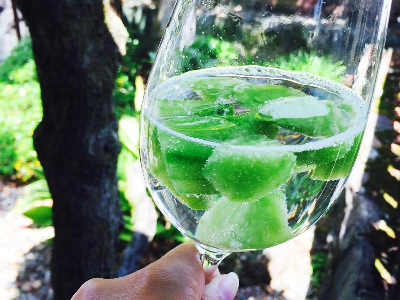 夏にピッタリ!話題の冷凍フルーツ&炭酸水を色んな種類で試してみた