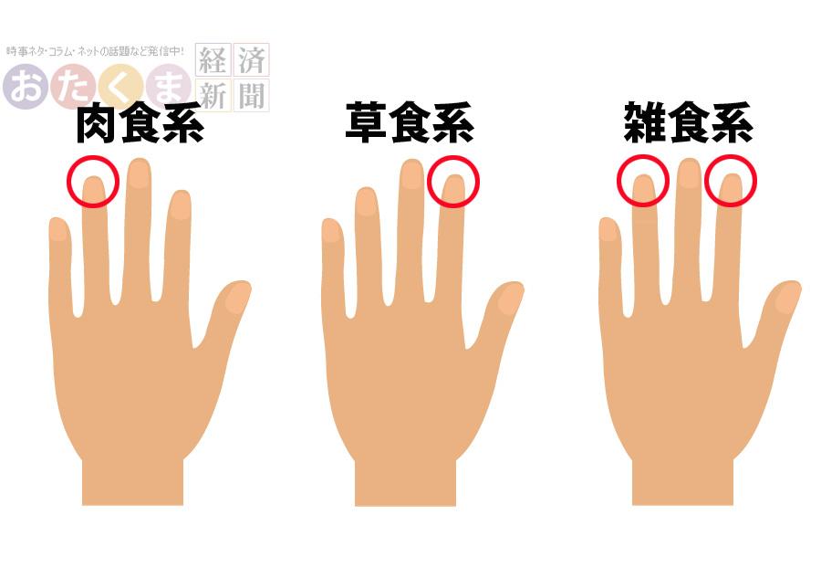 指の長さで草食系か肉食系かわかっちゃう!? あなたはどのタイプ?