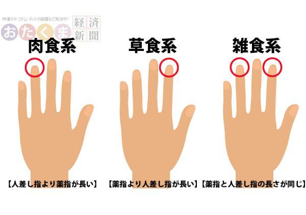 指の長さでわかる草食系、肉食系、雑食系