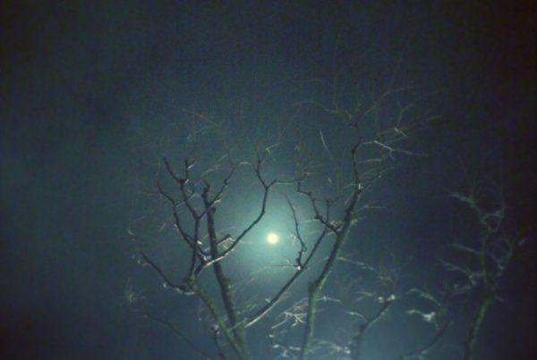 ホラー映画に出てきそうな夜空