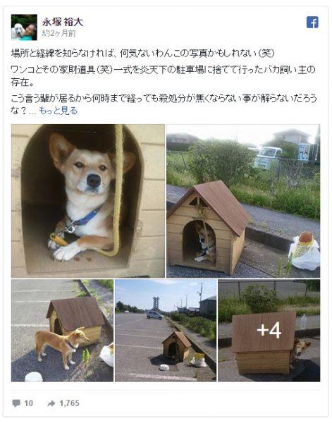 通称「家付き捨て犬」
