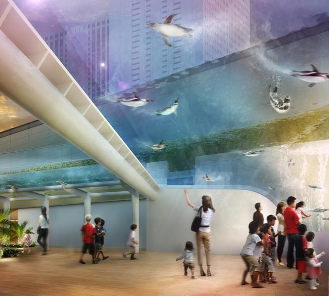 天空のペンギン!?池袋・サンシャイン水族館が大幅リニューアル