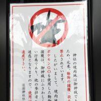 神社やお寺で神仏スルーのポケモンGO!!ってそれでいいの?