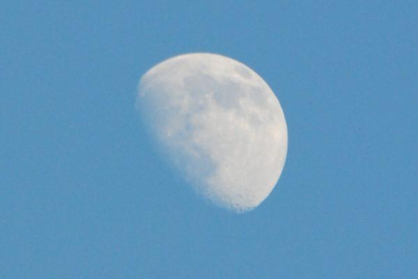 真昼の円月