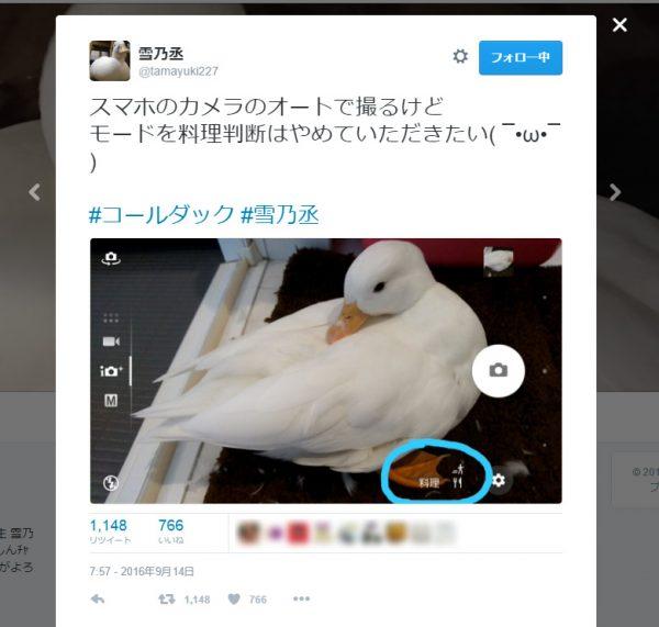 Twitterユーザー雪乃丞さんより。
