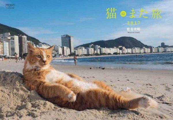 『猫にまた旅2017』今年は1号早く登場 アサヒカメラ12月号に付録