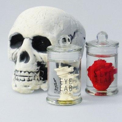 髑髏と並んだ心臓と骨髄