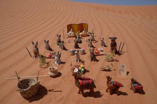アラブの砂漠のひな祭りが静かにゴージャス