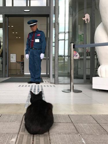 猫の展覧会に訪れた珍客と警備のほのぼの攻防が話題