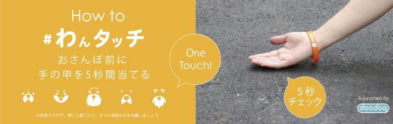 夏のお散歩前の新習慣「#わんタッチ」って知っていますか?