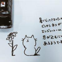 夏も猫のための「ボンネットバンバン」を!!夏は涼みにくるよ!