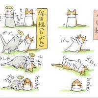 あの世とこの世が交わるとき……猫の世界でもこんな…