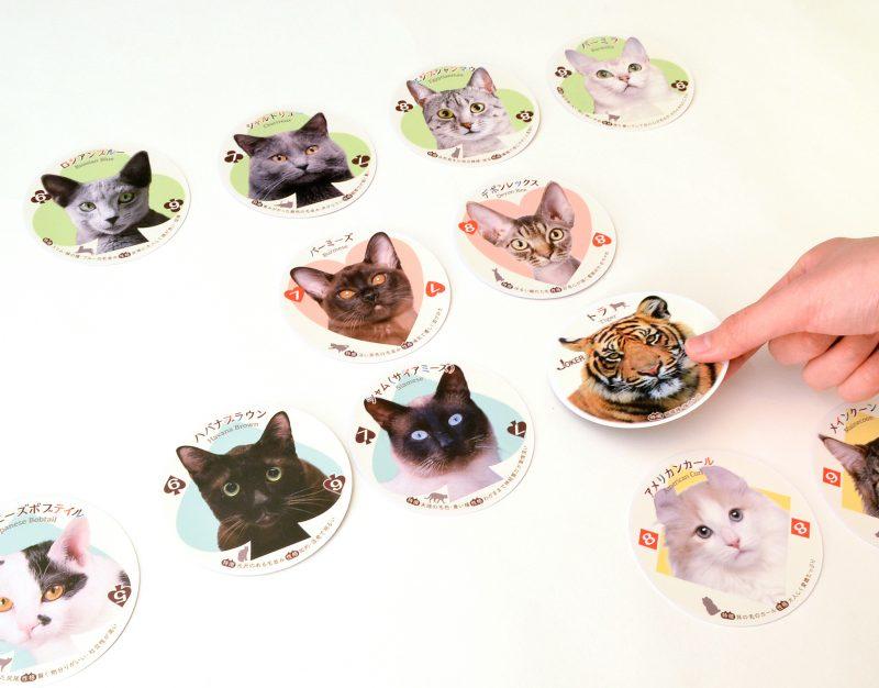 「猫ならべ」に「猫のしっぽ」ができるよ!54種の猫の写真で構成された『ねこトランプ』
