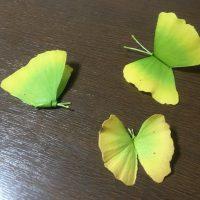 イチョウがチョウチョに大変身!秋の季節にやってみたい葉っぱ…