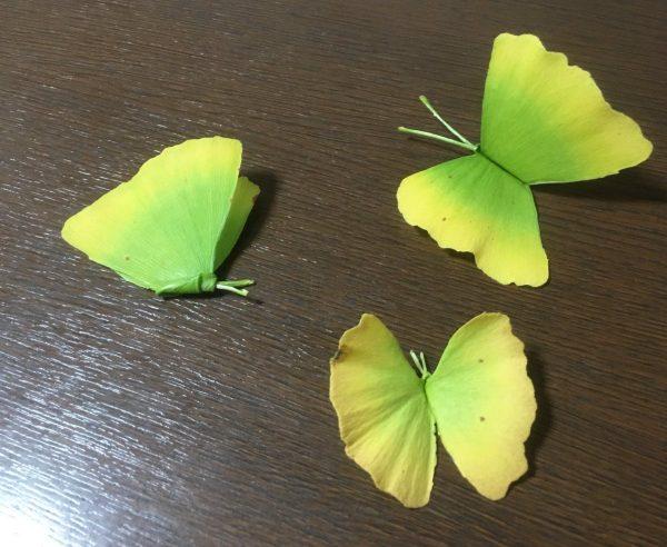 イチョウがチョウチョに大変身!秋の季節にやってみたい葉っぱ遊び