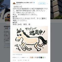 愛知県で馬が逃走中!県警ツイッターで注意呼びかけるも…絵が…
