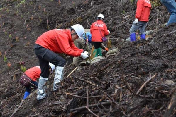 コカ・コーラが森も作っている?社長はじめ社員総勢320名が宮崎県の山奥に集結