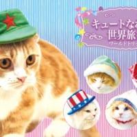 にゃーん。キュートな猫用コスプレ雑貨『necos』第2弾は…