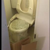 猫砂が原因と思しきトイレの惨劇にネット民悲鳴!猫砂は流さな…