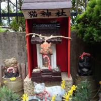イーハトーブの里に祀られる猫の御祭神。オトラサマと民話の郷の…
